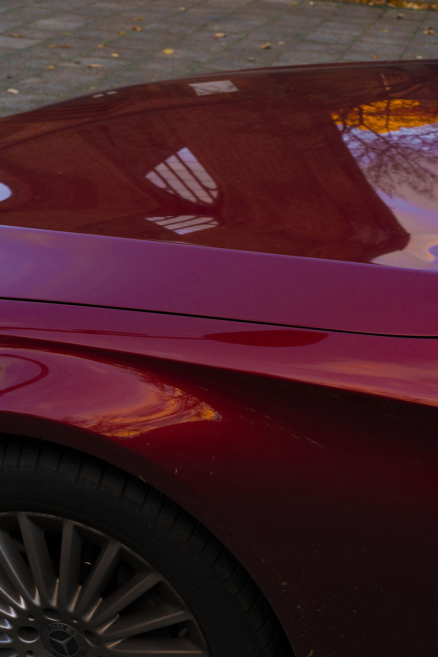 Photo by Paul Niedermayer. The contours of Klosterruine reflect in the shiny surface of a car